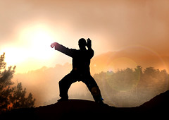 Stock Illustration of Tai Chi on Mountain (willdease) Tags: china morning light sunset cloud brown sun mountain man black tree art nature fog pine illustration standing sunrise indonesia lens stand peace image martialart martial spirit picture holy human zen mind balance meditation yinyang enlightenment taichi silhouetted fit stance enlighten