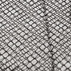 Enmeshed (jaxxon) Tags: light shadow blackandwhite bw white abstract macro texture lines dark square lens concrete grid prime grey nikon pattern mesh gray surface line sidewalk micro fixed desaturated abstraction 28 mm framework nikkor f28 squared vr afs 2014 105mm 105mmf28 d610 nikor f28g gvr jaxxon 105mmf28gvrmicro nikkor105mmf28gvrmicro nikon105mmf28gvrmicro jacksoncarson nikond610