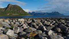 Am Fjord von Grunnfarnes (bolliger51) Tags: meer skandinavien norwegen steine nor landschaft stein nordsee senja kste gebirge bucht troms torsken gerll nordisch grunnfarnes steinblock kstengebirge
