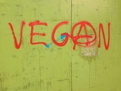 Vegan Graffiti (Rory Llowarch) Tags: england urban graffiti vegan hampshire innercity southampton vegans southamptonengland southamptonhampshire royllowarch royrichardllowarch