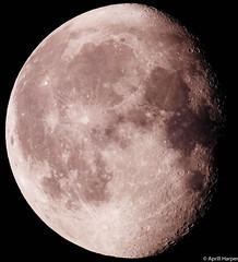 10dec14 lunar c (Wyld-Katt) Tags: moon lunar