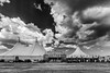 Porto Cesareo, agosto 2014 (ma[mi]losa) Tags: 2014 mamilosa micheledefilippomami