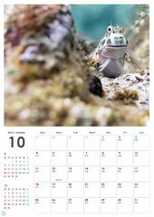 apd Calendar2015B5-10.jpg (d3_plus) Tags: street sea sky fish beach japan mackerel tokyo scenery calendar diving newyear daily snorkeling  shizuoka   dailyphoto j1  izu kawasaki  thesedays hny    skindiving   minamiizu       nikon1 hirizo   nakagi nikon1j1 1nikkor185mmf18 1   beachhirizo misakafishingport