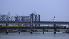 DSC1775 (nEUROn FL) Tags: train rainyday railway jr hiroshima    115