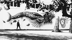 Animal ... On est mal ... (kitchou1 Thanx 4 UR Visits Coms+Faves.) Tags: world park street people bw streetart art nature animals landscape mural europe cityscape exterior belgium nb