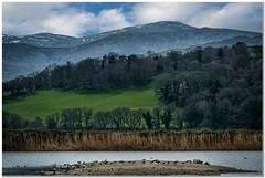 Carnedd Gwenllian (Hugh Stanton) Tags: trees lake mountains nature birds forest reeds island woods reserve