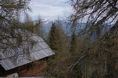 Nockberge (Harald Reichmann) Tags: schnee berg htte haus krnten landschaft wald baum fichte frhling lrche gebirge gipfel nockberge gerlitze arriach