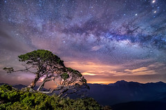 galaxy () Tags: sky tree nature night nikon taiwan nopeople galaxy