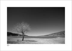 Ken's Lake (Clicker_J) Tags: lighting trees light bw white mountain lake tree water america landscape blackwhite nikon naturallight mountainview nationalparks eastern highlight lakeviews