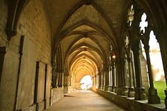 Cathdrale de Noyon (JDAMI) Tags: nikon lumire arches cathdrale tamron gothique 60 picardie noyon d600 oise cloitre 2470 ogives hautsdefrance