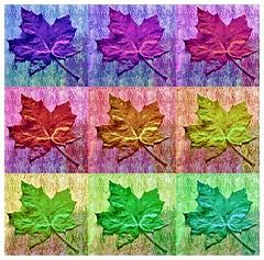 Ahornblatt (3), Popart (menzelhd) Tags: origami popart blatt papier ahorn
