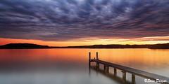0S1A7767 (Steve Daggar) Tags: longexposure sunset landscape moody jetty saratoga dramatic wharf waterscape gosford visitnsw