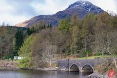 On the way to Skye 7 (Kasia Sokulska (KasiaBasic)) Tags: trees lake mountains landscape scotland spring highlands loch lomond inveruglas fujix