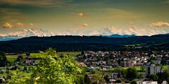 Alpenblick (eldelfraval) Tags: family panorama alps schweiz switzerland suisse svizzra pano alpen svizzera aargau 1685 aarburg bernesealps schneeberge k30 alpenkette alpinechain