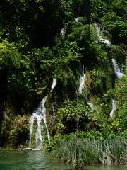 DSC00267 (hyacinth314) Tags: lake nature water waterfall nationalpark croatia plitvice plitvikajezera