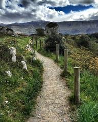 Beach Path. Playa de Poo, Asturias. #beach #path #playa #asturias #asturies #landscape #nature #naturalez #espaa #spain #travel (ramosquis) Tags: travel espaa beach nature landscape spain path asturias playa asturies naturalez