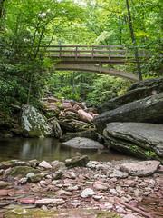 Tanawah Trail Footbridge from Boone Fork Creek (jimf_29605) Tags: bridge creek footbridge northcarolina olympus zuiko blueridgeparkway e5 zd 1260mm tanawahtrail booneforkcreek