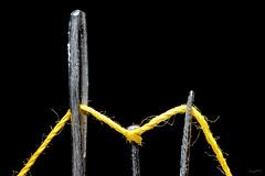 Needles, pin and sewing wire (Franco Gavioli) Tags: macro wire pin sewing needle sicily ago augusta sicilia francesco filo 2016 spillo gavioli canonef100mmf28macrousm fragavio canoneos600d dynasunwt666testa3dwt010h