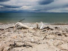 the beach at findhorn (violica) Tags: beach scotland sand unitedkingdom spiaggia regnounito moray sabbia morayfirth findhorn scozia firthofmoray