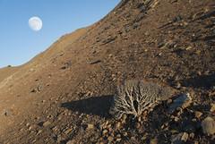 On Mars (Riccardo Mastroianni) Tags: island minorca moon full desert coast sea