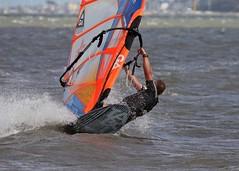Aug0319a (Mike Millard) Tags: hamworthypark pooleharbour windsurfers