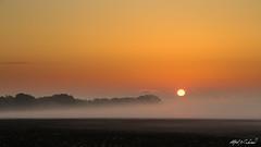 Foggy Sunrise Over A Plowed Field (Alfred J. Lockwood Photography) Tags: alfredjlockwood nature landscape dawn sunrise fog mist keller field clearsky texas color