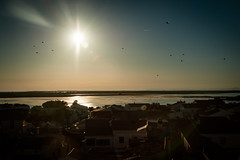 (anto291) Tags: camargue lessaintesmariesdelamer tramonto sunset