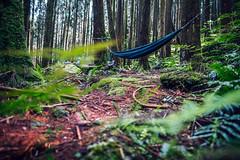 012 (Edinman ) Tags:       trail hiking