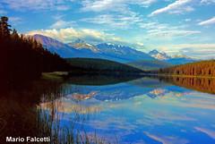 Canada: Jasper National Park (mariofalcetti) Tags: canada jaspernationalpark jasper lake lago water acqua landscape paesaggio reflection montagne mountain park parco nature natura