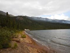 The shore of Iniakuk Lake