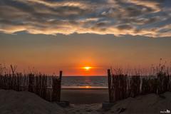 Gate to the sun (BraCom (Bram)) Tags: bracom fence hek clouds wolken sunset seascape beach strand zonsondergang sand zand gate poort pole paal sun zon sea zee refelection spiegeling water ouddorp northsea noordzee brouwersdam goereeoverflakkee zuidholland nederland bramvanbroekhoven nl