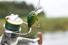 Plastic fishing lure wobbler on the spinning (mikhafff1984) Tags: water nature fish eye active adventure anchor angling artificial attraction bait bass big bronze catch closeup cord cut danger dangerous expensive fishing fly freshwater golden green hardbait head hobby hooks