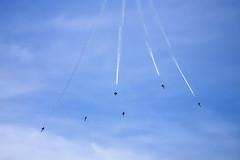 Blue Angels: Falling Angels (so1150) Tags: fleetweek blueangels usnavy fa18 nikon d810 70200mmf28 sanfranciscobay