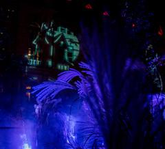 Halloween-2 (Alan McCollough) Tags: quebec night halloween cityhall hotel de ville smog