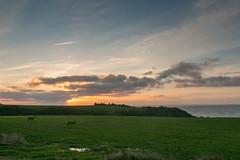 Sonnenuntergang am Limfjord (AxelN) Tags: sunset sky field clouds denmark sonnenuntergang feld meadow wiese wiesen himmel wolken dnemark danmark limfjord jutland jylland jtland ranum regionnordjylland