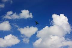 Voltige dans les nuages (philippe.ducloux) Tags: yak sky cloud france clouds plane canon aircraft meeting bluesky 11 ciel filter toulouse nuage nuages avion filtre cielbleu polarizingfilter polarizing arien sudouest meetingarien yakovlev hautegaronne midipyrnes yak11 polarisant 450d mywinners canon450d flickraward filtrepolarisant francazal strictlygeotagged destoilesetdesailes httpwwwdesetoilesetdesailescom