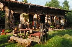 Il Giardino dell'Amore a Ferrara (Palazzo Schifanoia) (michelegalli) Tags: ferrara palazzo giardino dellamore schifanoia