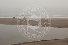 CALIFORNIA-790