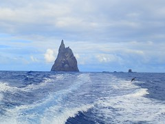Balls Pyramid with Shearwater (Red Nomad OZ) Tags: australia newsouthwales lordhoweisland ballspyramid