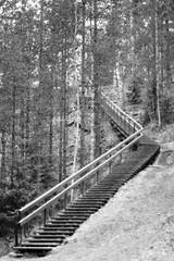 Waldweg (FinnFoto - F+F aus meiner Sicht) Tags: afnikkor50mmf14 natur finnland landschaft nikond300 hyvinkää uusimaa fin de blende14