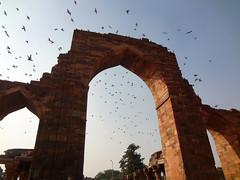Near Qutab Minar (sarathrap) Tags: india architecture delhi qutubminar qutabminar qutbminar delhitourism incredibelindia
