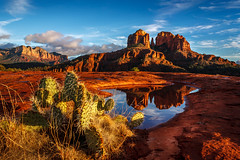 After the Rain (davecurry8) Tags: arizona reflection rain clouds puddle sedona redrock cathedralrock