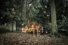 Ghost of Winter (stephanie_ruebenach) Tags: longexposure autumn selfportrait photoshop canon herbst gothic desaturated canon1855 langzeitbelichtung selbstportrt entsttigt