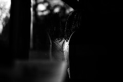 2/365 half Outside (bernobserver) Tags: street winter light bw woman black bus window person photography lights fuji shadows streetphotography human fujifilm bern 365 bnw f12 challange blacknwithe xt1 xf56