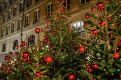 Noël à Paris (tintinetmilou) Tags: christmas paris à noel noël gordgallagher paris2014novembre