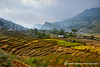 Homes in the Rice Fields (fesign) Tags: houses sunlight plant nature field horizontal landscape outdoors photography day village rice tranquility vietnam agriculture ricefield scenics sapa riceterraces paddyfield extremeterrain colourimage cultivatedland elevatedview terracedfields hoanglienson laocaiprovince ricecrops hoangliennaturereserve