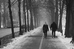Walk into the haze (blondinrikard) Tags: street winter people mist snow misty fog göteborg december noiretblanc walk gothenburg foggy streetphotography dimma 2015 dimmigt allén gatufoto