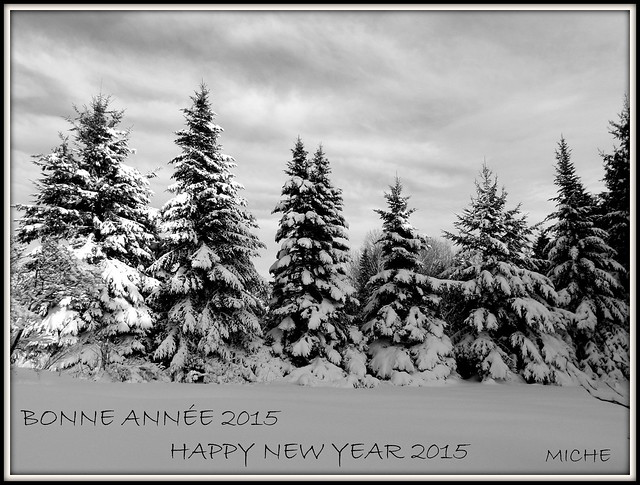 Mes meilleurs voeux pour lannée 2015é  Wishing everybody a happy &healthy 2015