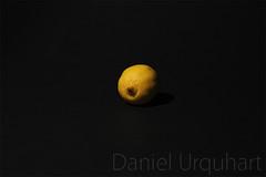 Lemon Spot Metering (Daniel Urquhart) Tags: canon eos lemon spot metering 18135mm 60d