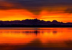 Abendrot am See (novofotoo) Tags: bayern deutschland oberbayern alpen landschaft chiemsee abenddmmerung chieming alpenvorland